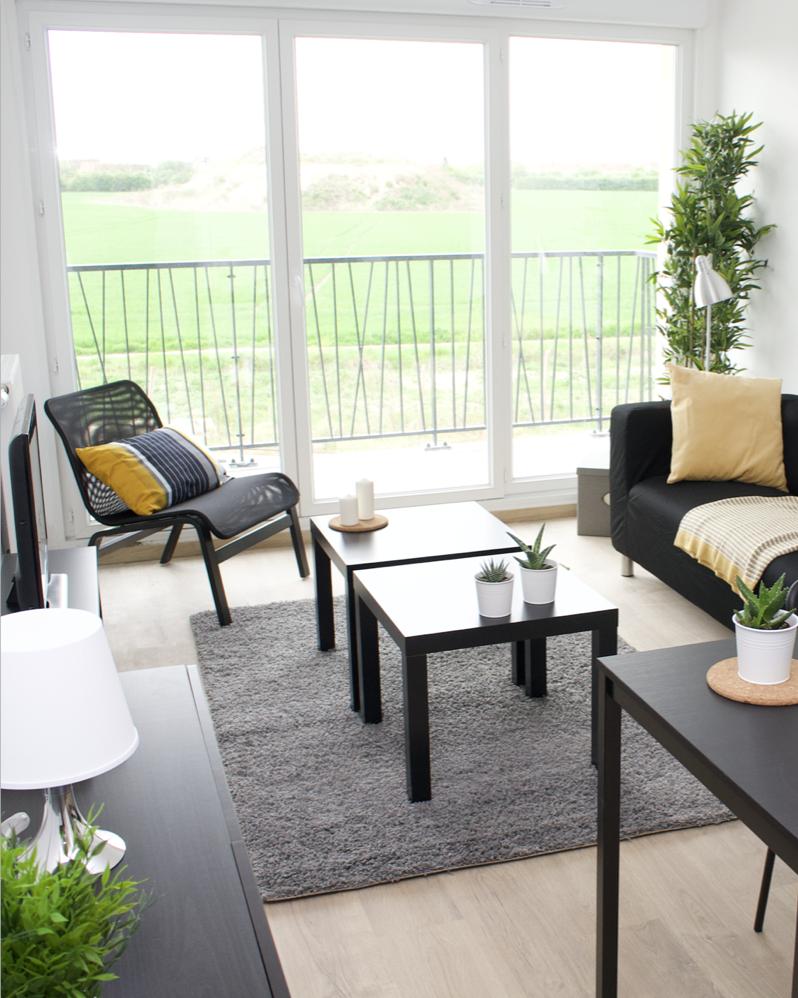 location de meubles avec ambiance prédéfinie pour les promoteurs immobiliers